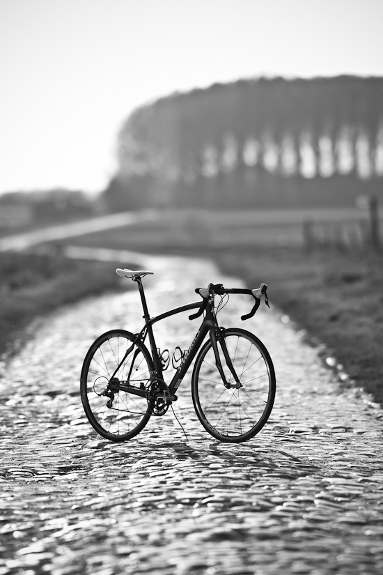 The Specialized Roubaix